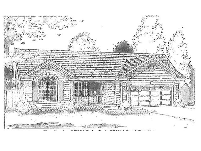 Lot 1 New Guinea Road, Clarendon, NY 14470 (MLS #R1050431) :: The Chip Hodgkins Team
