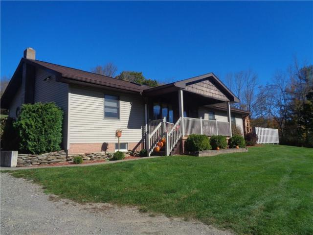 6355 County Route 68, Hornellsville, NY 14843 (MLS #R1080379) :: The Chip Hodgkins Team