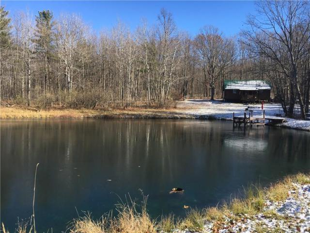 2992 Springbrook Road, Canisteo, NY 14823 (MLS #R1088399) :: The CJ Lore Team | RE/MAX Hometown Choice