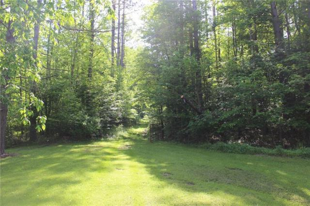 0 Co Road 18, Alma, NY 14708 (MLS #R1094358) :: 716 Realty Group