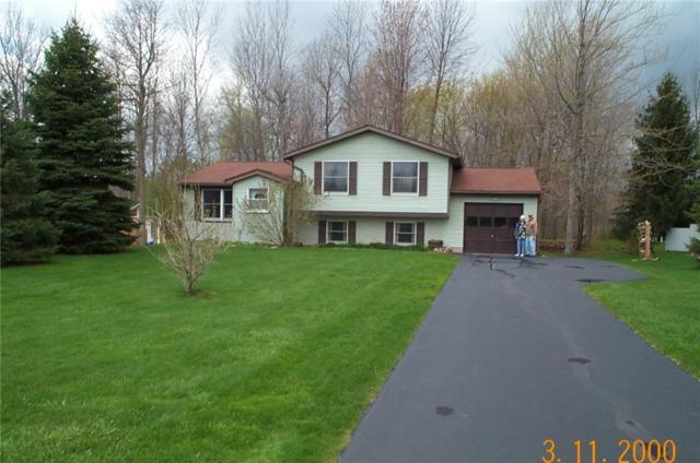 87 Thistlewood Lane, Ogden, NY 14559 (MLS #R1099178) :: Robert PiazzaPalotto Sold Team