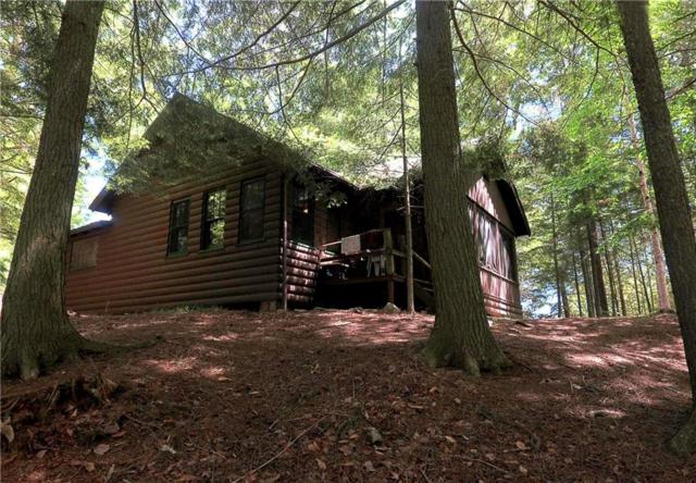 175 Sixth Lake Rd Road, Inlet, NY 13360 (MLS #R1114001) :: The Rich McCarron Team