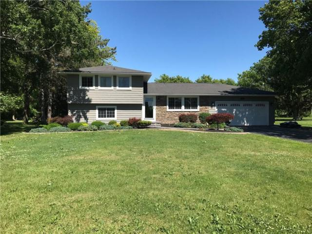 122 Collamer Road, Parma, NY 14468 (MLS #R1125757) :: The CJ Lore Team | RE/MAX Hometown Choice