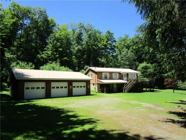2667 Wolf Spring Road, Scio, NY 14880 (MLS #R1128788) :: Updegraff Group