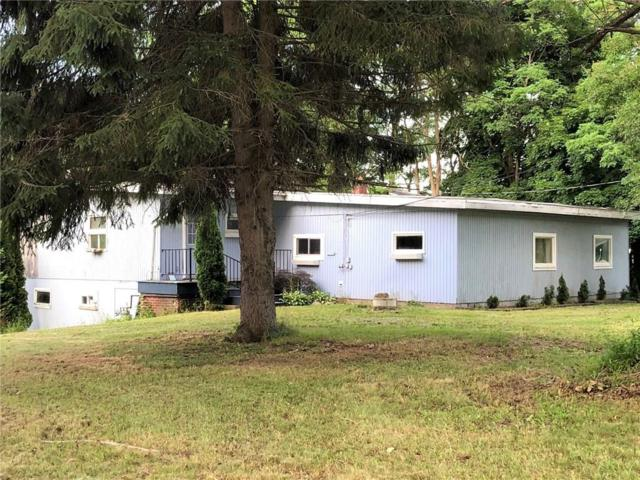 3814 Route 394, North Harmony, NY 14710 (MLS #R1130109) :: The Chip Hodgkins Team