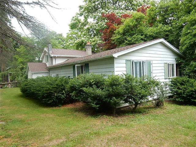 289 State Route 14, Lyons, NY 14489 (MLS #R1136973) :: Robert PiazzaPalotto Sold Team