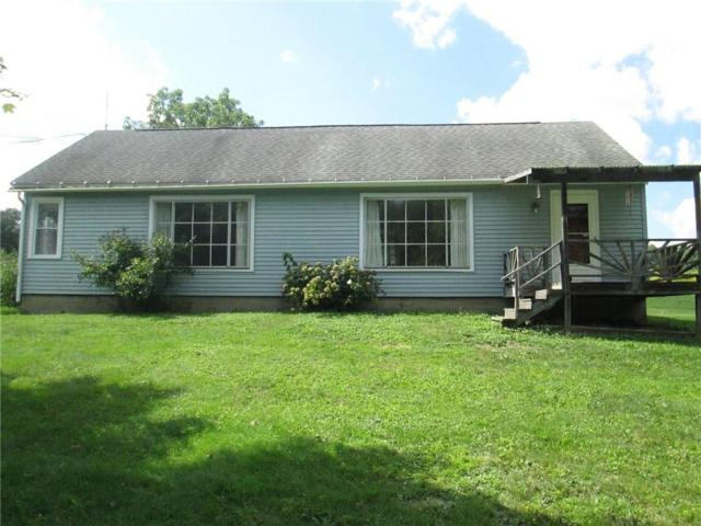 3821 County Road 9, Scio, NY 14880 (MLS #R1143436) :: Updegraff Group