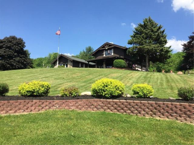 6050 Vista Hill Road, North Dansville, NY 14437 (MLS #R1143488) :: The CJ Lore Team | RE/MAX Hometown Choice