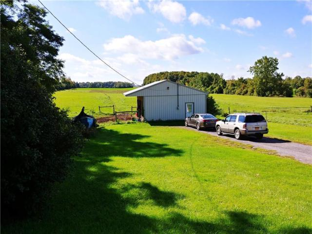 3271 State Route 488 Road, Hopewell, NY 14432 (MLS #R1151130) :: Updegraff Group