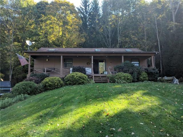5101 State Route 64, Bristol, NY 14424 (MLS #R1153276) :: The Rich McCarron Team