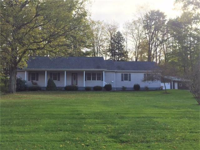 1688 Route 426, French Creek, NY 14724 (MLS #R1155518) :: The Rich McCarron Team
