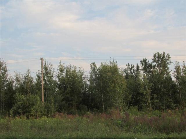 0 VL 5614 Route 104, Sodus, NY 14551 (MLS #R1159536) :: Robert PiazzaPalotto Sold Team