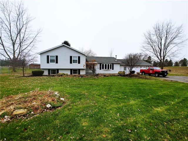 2442 Whalen Road, East Bloomfield, NY 14469 (MLS #R1166804) :: MyTown Realty