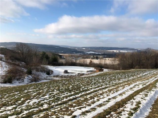 0 Reddy Hollow Road, Dansville, NY 14807 (MLS #R1167391) :: Updegraff Group
