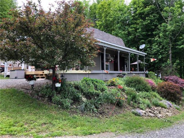 9003 Akins Road, Cohocton, NY 14826 (MLS #R1171671) :: Updegraff Group