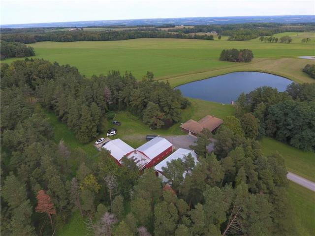 3471 Cty Rd 143, Covert, NY 14847 (MLS #R1174497) :: Robert PiazzaPalotto Sold Team