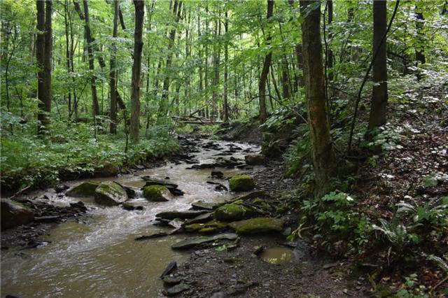 1996 28 Mile Creek Road, Gerry, NY 14740 (MLS #R1175522) :: 716 Realty Group