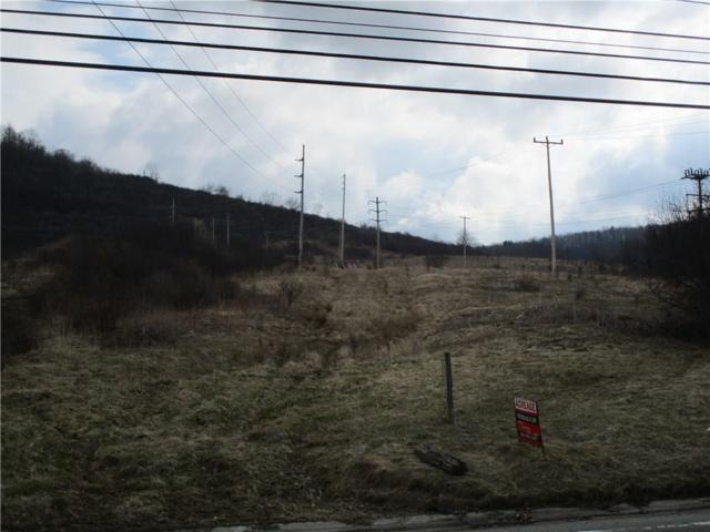 0 Stannards Road, Wellsville, NY 14895 (MLS #R1178098) :: The Chip Hodgkins Team