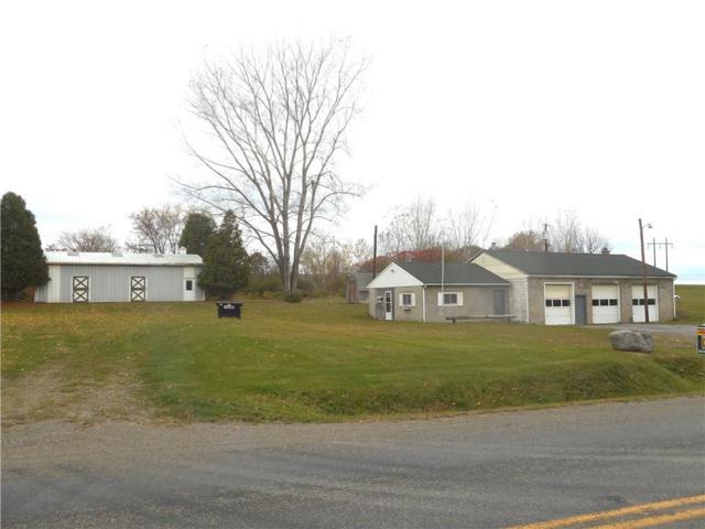 10987 Sandy Hill, Dansville, NY 14437 (MLS #R1181894) :: Updegraff Group