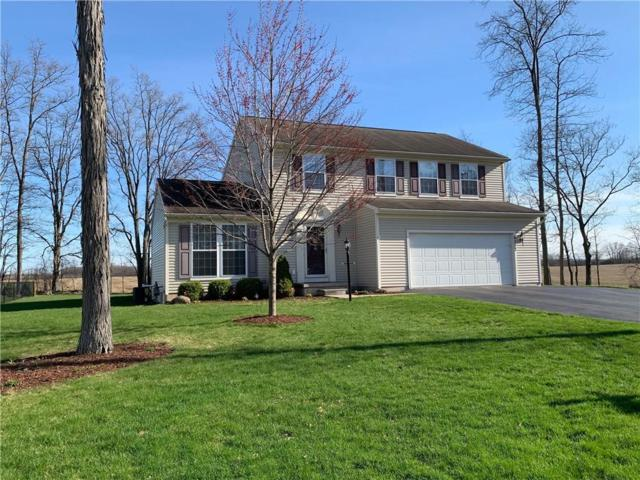 6017 Palomino Court, Canandaigua-Town, NY 14424 (MLS #R1184002) :: The Chip Hodgkins Team