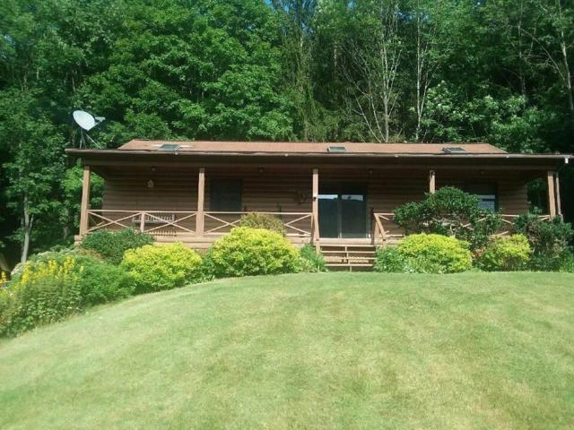 5101 State Route 64, Bristol, NY 14424 (MLS #R1184467) :: Robert PiazzaPalotto Sold Team