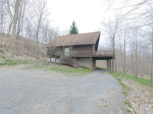 1793 Outlet Road, Milo, NY 14527 (MLS #R1186594) :: The Chip Hodgkins Team