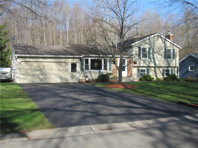 914 Little Bardfield Road, Webster, NY 14580 (MLS #R1187613) :: Robert PiazzaPalotto Sold Team