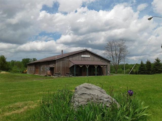 3077 Center Road, Scipio, NY 13118 (MLS #R1192042) :: 716 Realty Group
