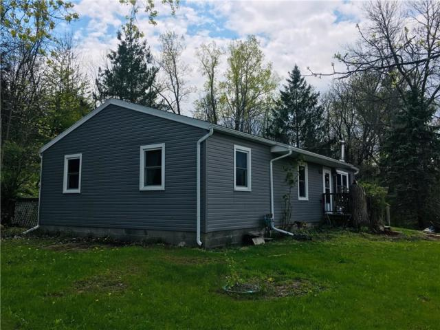 5195 County Road 11, Gorham, NY 14544 (MLS #R1194125) :: MyTown Realty