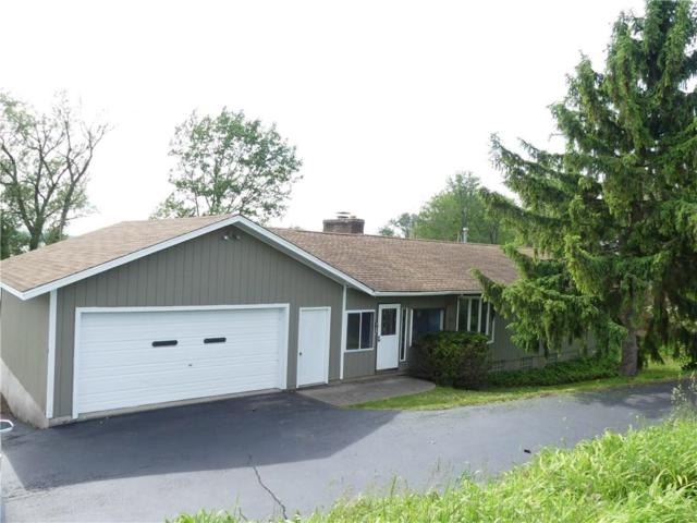 5341 E Lake Road, Chautauqua, NY 14728 (MLS #R1201475) :: Updegraff Group