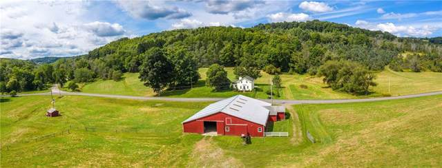 7065 County Route 14 Road, Bath, NY 14810 (MLS #R1224102) :: The Chip Hodgkins Team