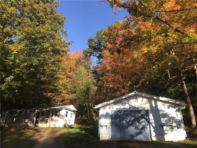 6099 County Road 37, Canadice, NY 14560 (MLS #R1231832) :: 716 Realty Group