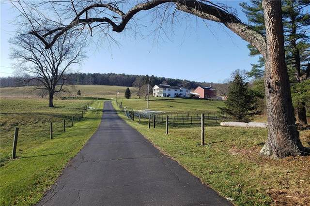 37 Beckwith Road, Southport, NY 14871 (MLS #R1232138) :: Robert PiazzaPalotto Sold Team