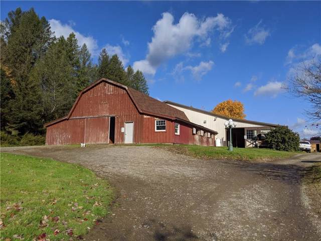 3598 Bakerstand Road, Franklinville, NY 14737 (MLS #R1236422) :: MyTown Realty