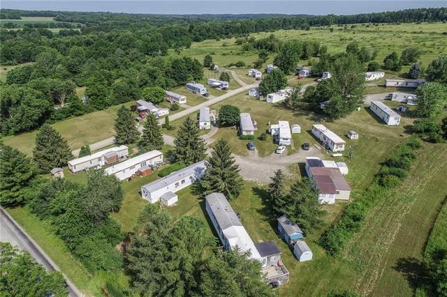 6189 Bower Road, Hector, NY 14886 (MLS #R1249714) :: Lore Real Estate Services