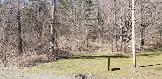 0 Wolf Run Road, Campbell, NY 14821 (MLS #R1253929) :: Lore Real Estate Services