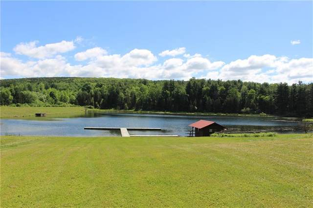 1140 Willey Road, Dansville, NY 14807 (MLS #R1257200) :: BridgeView Real Estate Services