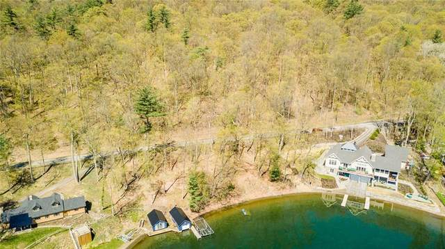 10193 E Bluff Drive, Jerusalem, NY 14527 (MLS #R1262076) :: Updegraff Group