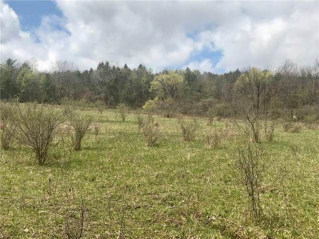 0 Kemp-Shaw Road, Granger, NY 14846 (MLS #R1265444) :: BridgeView Real Estate Services