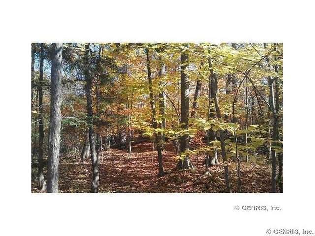 Lots 23-45 Shorewood Trail, Ontario, NY 14519 (MLS #R1278172) :: TLC Real Estate LLC