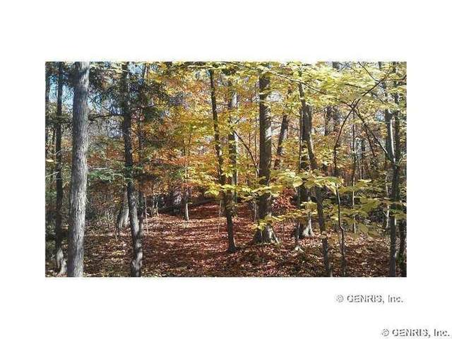 Lots 23-45 Shorewood Trail, Ontario, NY 14519 (MLS #R1278172) :: Mary St.George | Keller Williams Gateway