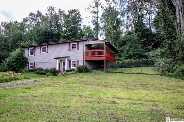 6295 S Road Nys Rt 83, Cherry Creek, NY 14723 (MLS #R1283603) :: Thousand Islands Realty