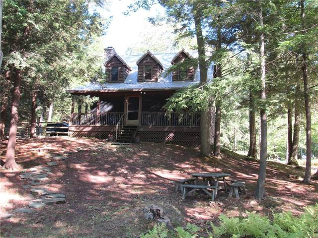 59 County Route 40, Mexico, NY 13114 (MLS #R1296113) :: Thousand Islands Realty