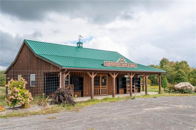 14877 W Ridge Road, Gaines, NY 14411 (MLS #R1298347) :: Thousand Islands Realty