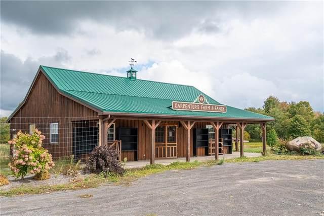 14877 W Ridge Road, Gaines, NY 14411 (MLS #R1298347) :: BridgeView Real Estate Services