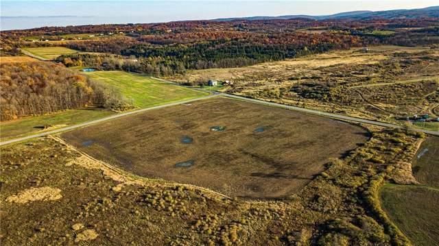 7900 Olmstead Rd, East Bloomfield, NY 14469 (MLS #R1303270) :: BridgeView Real Estate Services