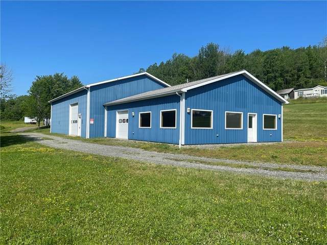 4024 Lewis Rd, Thurston, NY 14821 (MLS #R1321838) :: Robert PiazzaPalotto Sold Team