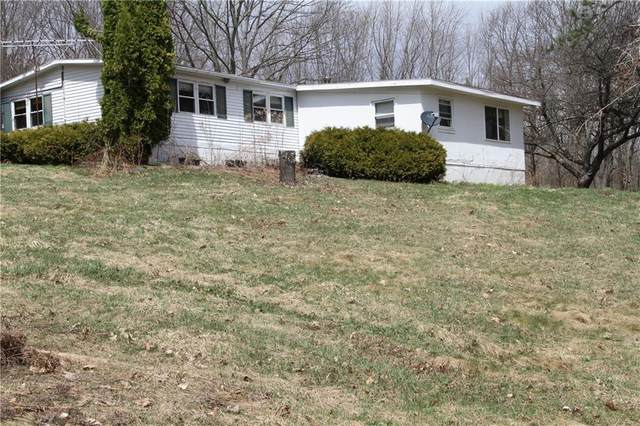 6463 County Route 7, Prattsburgh, NY 14873 (MLS #R1322796) :: 716 Realty Group