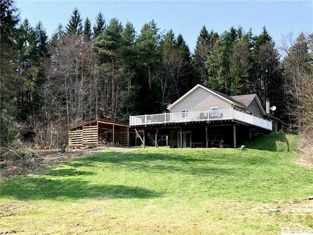 11631 Youngs Road, Conewango, NY 14726 (MLS #R1328640) :: 716 Realty Group