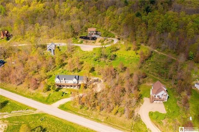 5718 Bonn E, Great Valley, NY 14741 (MLS #R1337102) :: 716 Realty Group